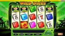 <h5>Wild Dices slot bij Carousel met €510 bonus!</h5>